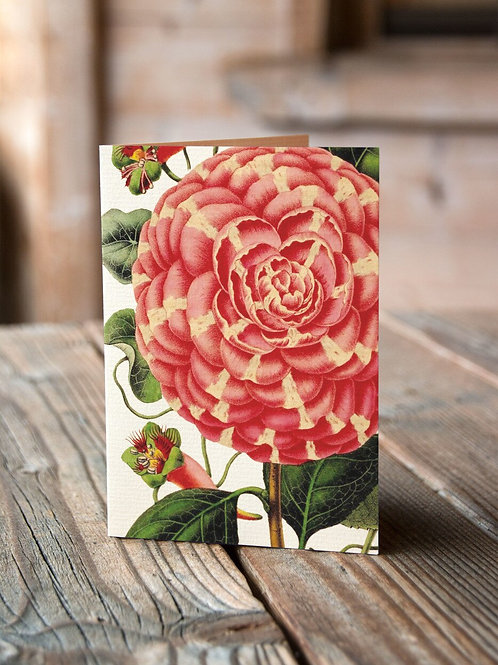 Botanical Card No. 11250-Blank Note Card