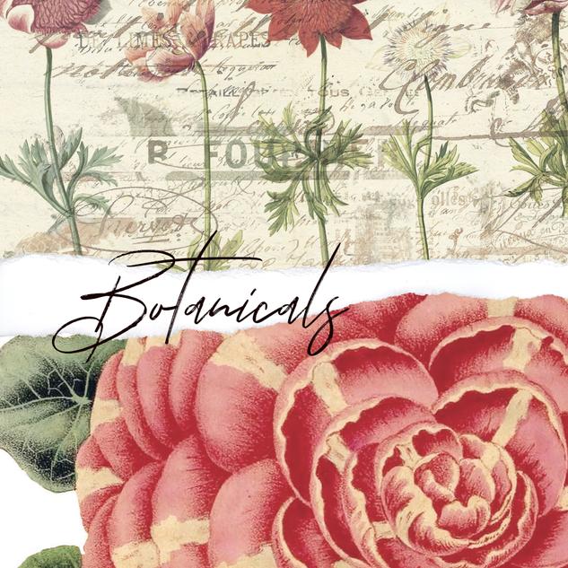botanicals.png