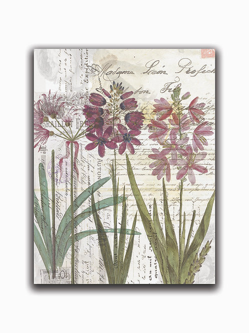 Botanical Collage 55926-Blank Note Card