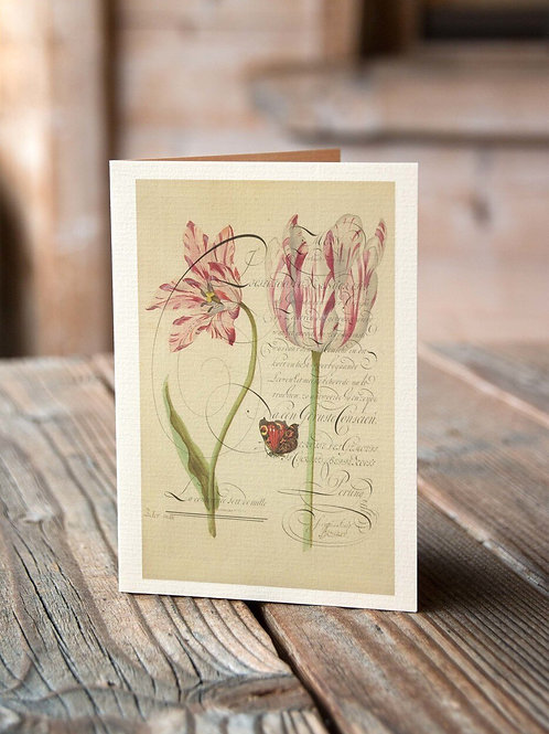 Antique Botanical Collage Print-No.046-Blank Note Card