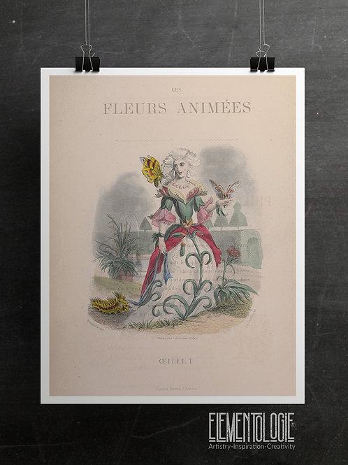 Botanical Printable print No 064
