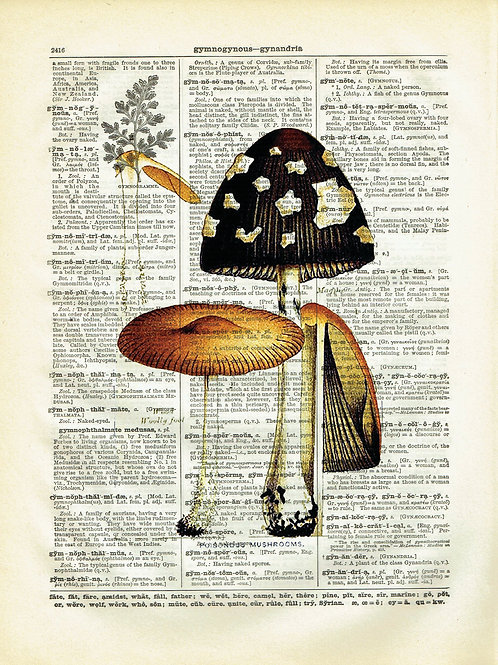 Mushrooms-Vintage Book Page Art Print No.02
