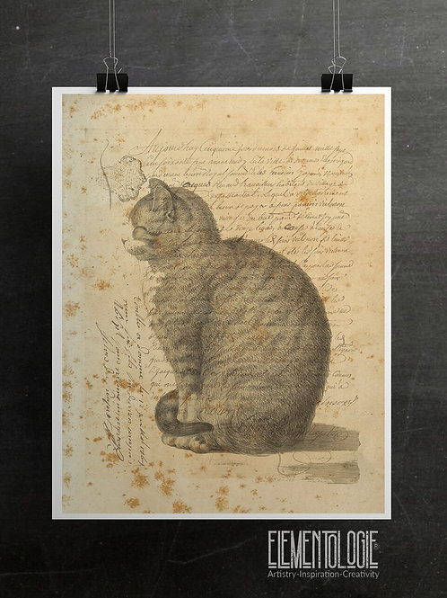 Vintage Cat Collage Print-No.22347