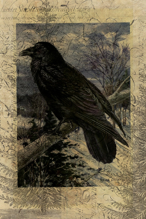 Raven Collage Print-No.988