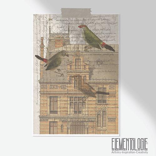 Bird Collage Print-No.507