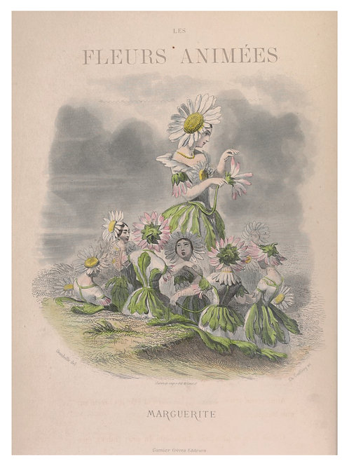 Botanical Printable print No 062