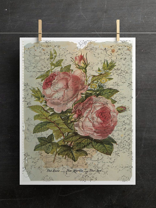 Botanical Print-No. 05