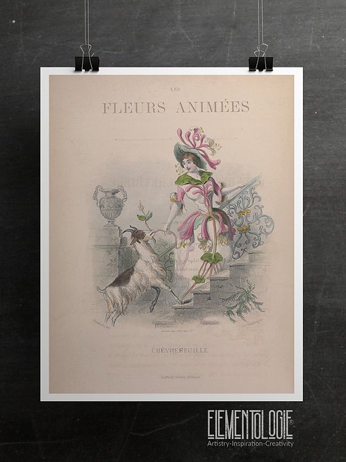 Botanical Printable print No 057
