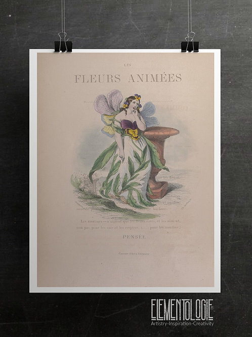 Les Fleurs Animees Collage Print- pansy-No.050
