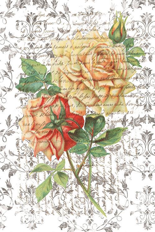 French Botanical Print No. 32