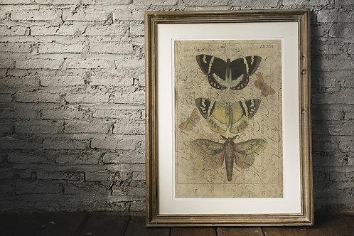 Nature Collage Print-No.501