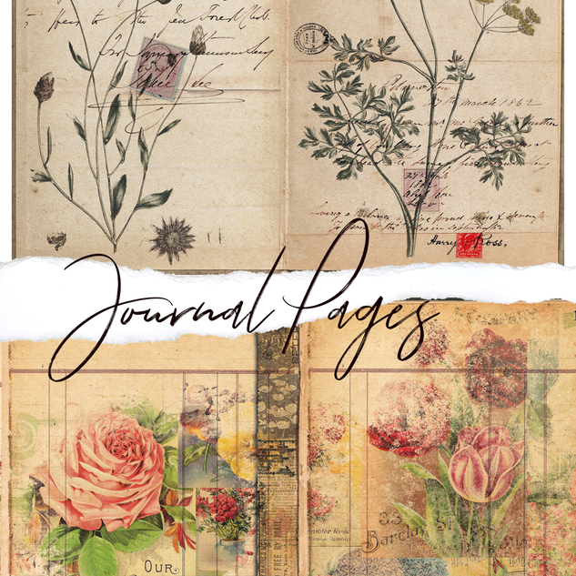 journal pages.png