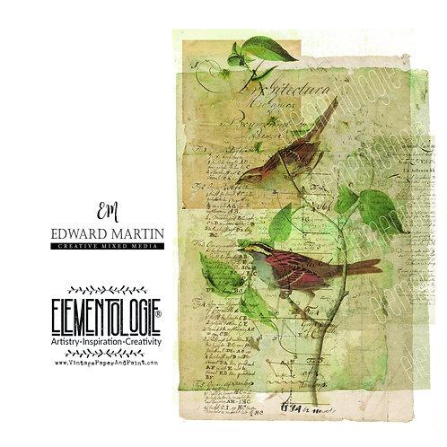 Ephemera Printable Collage Sheet No 0117