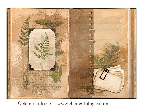 Botanical Junk Journal Double Page Sheet- No 123021-Digital Downl