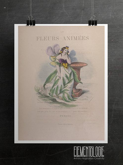 Botanical Printable print No 050