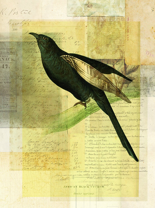Bird Collage Print-No. 111