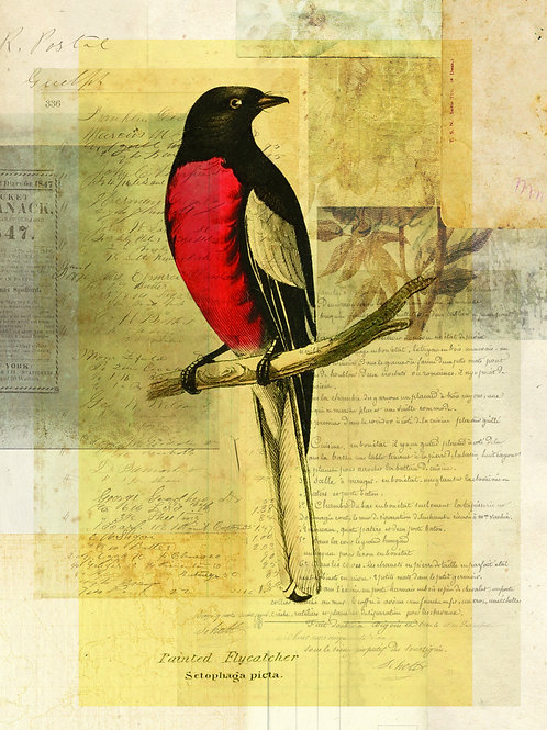 Bird Collage Print-No. 110