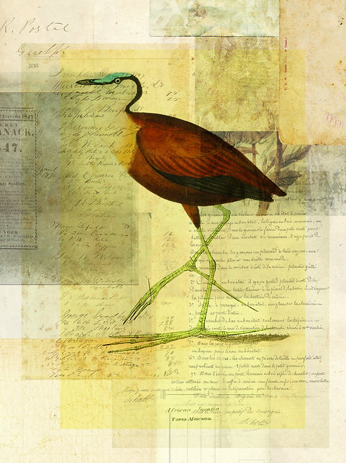 Bird Collage Print No. 115