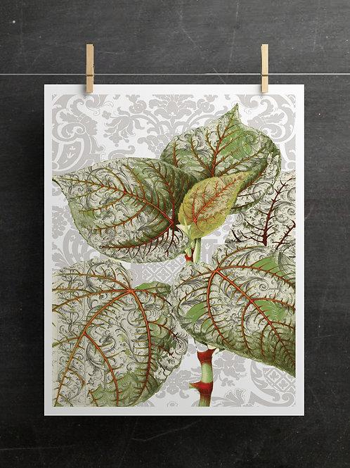 Botanical Collage Print No. 99877