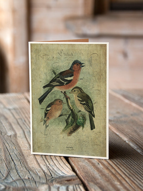 Bird Collage Print-No.33358-Blank Note Card