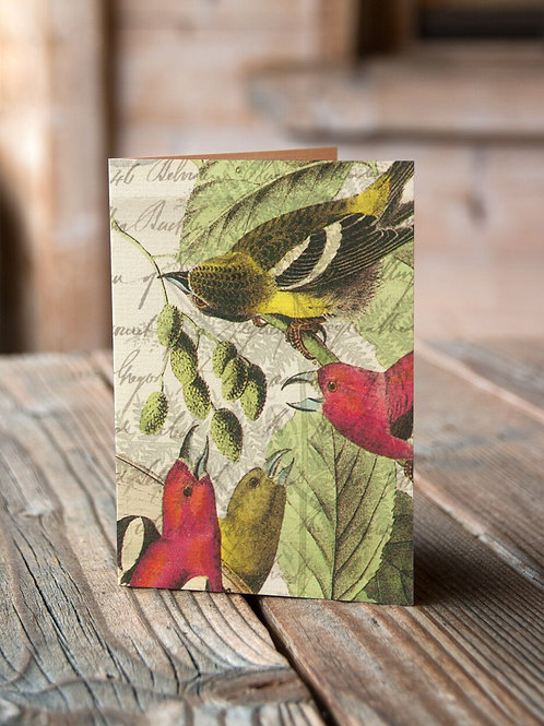 Bird Note Card No. 4448-Blank Note Card