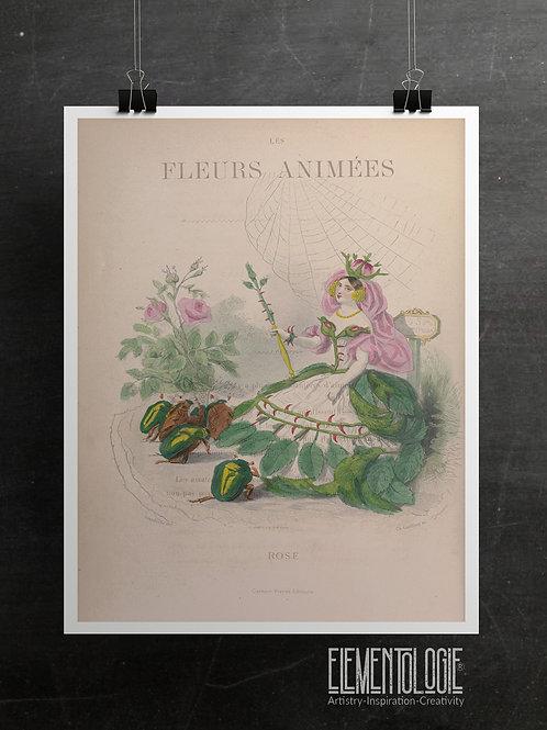 Botanical Printable print No 053