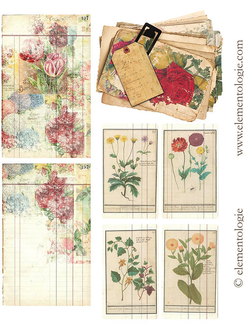 Botanical Embellishments- No 87203-Digital Download