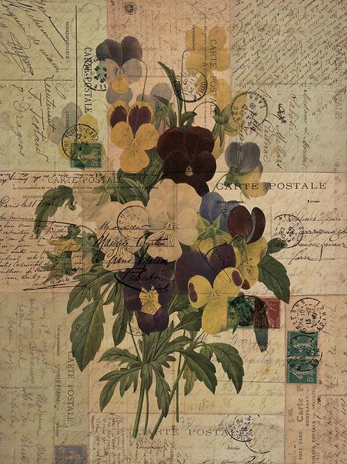 Botanical Printable print No 047