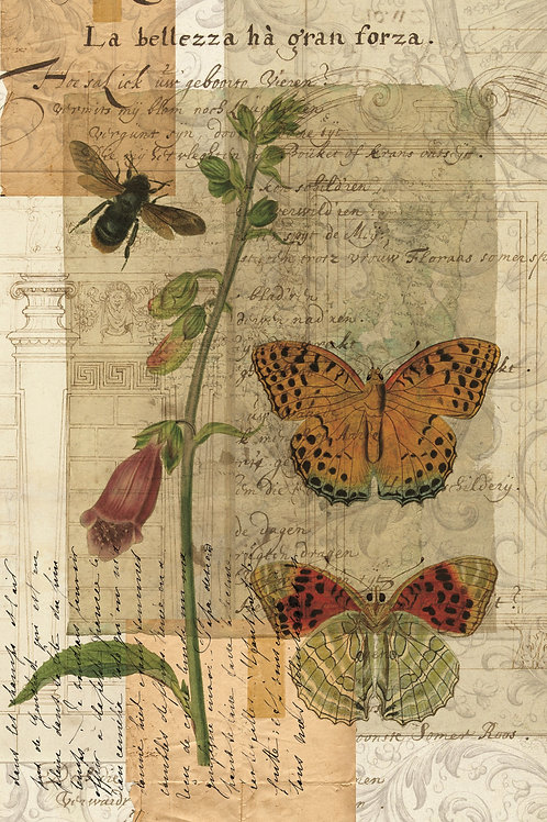 Butterfly Collage Print-No.0099