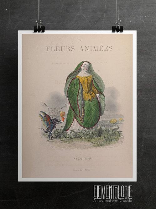 Botanical Printable print No 056