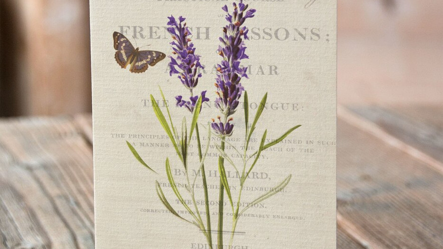 french-botanical-05-wb__63275.1528943754