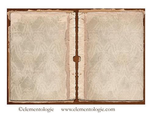 Vintage Ephemera Junk Journal Double Page Sheet- No 123009-Digital Downl