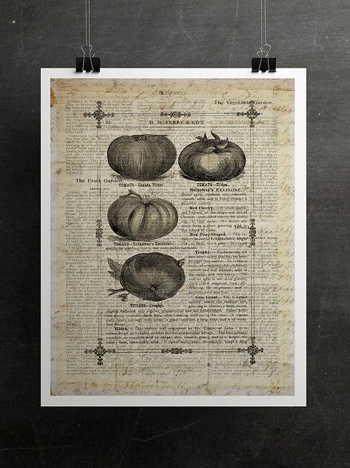 Gardening Print-Number 008