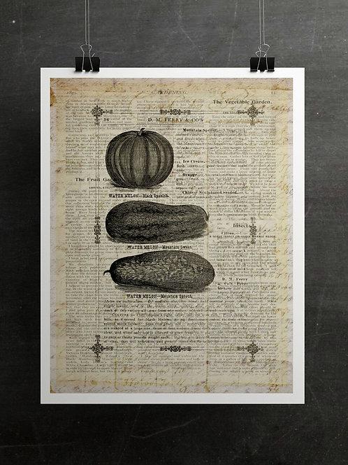 Gardening Print-Number 009