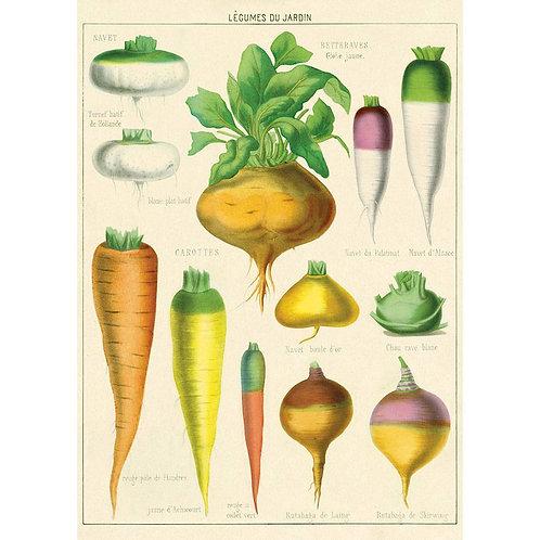 Legumes Dejardin