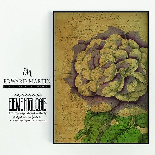 Antique Botanical Collage Print-No.105