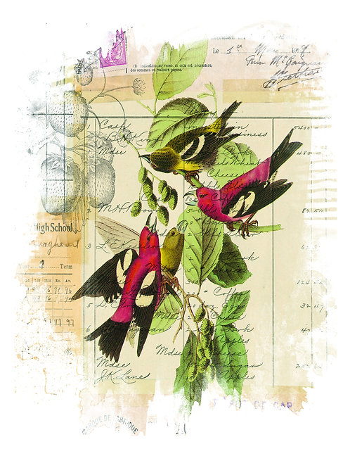 Bird Collage Print No. 014