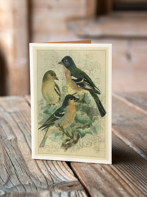 Bird Collage Print-No.33356-Blank Note Card
