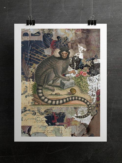Curiosity Print-No. 1123-Blank Note Card