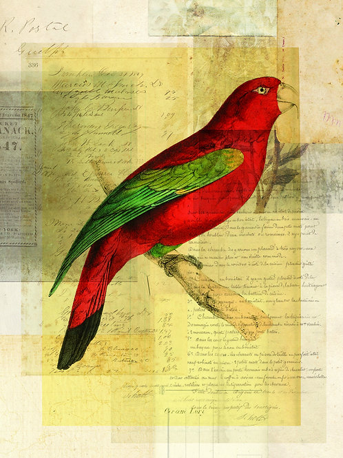 Bird Collage Print No. 117