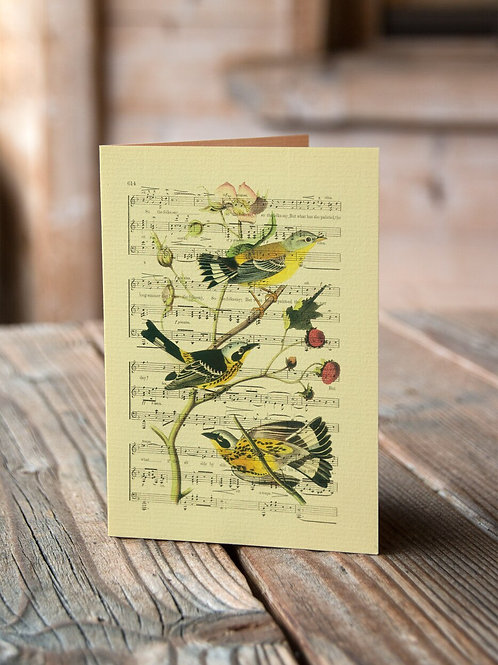 Bird Note Card No. 03-Blank Note Card