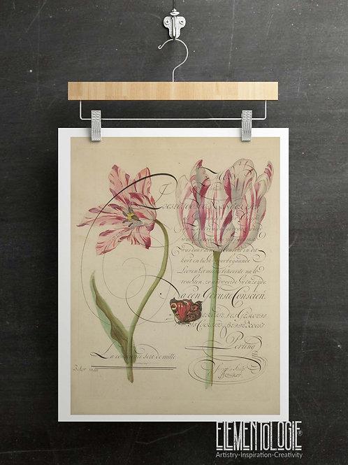 Botanical Printable print No 046
