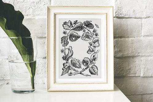 Antique Botanical Collage Print-No.034
