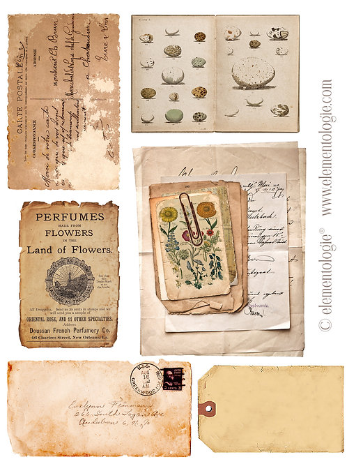 Vintage Ephemera Embellishments- No 87221-Digital Download