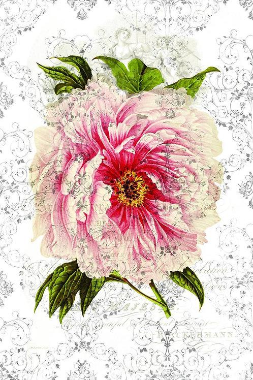 Botanical Collage Print No. 41