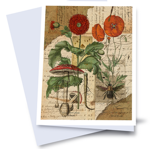 Gift/Note Cards