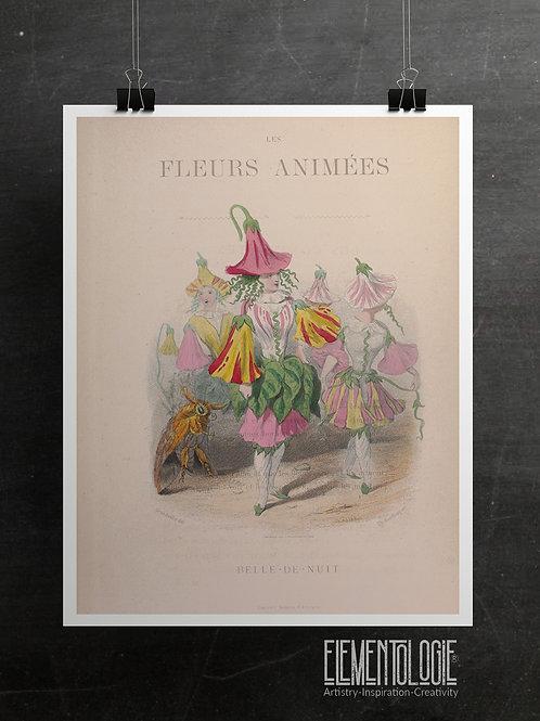 Botanical Printable print No 063