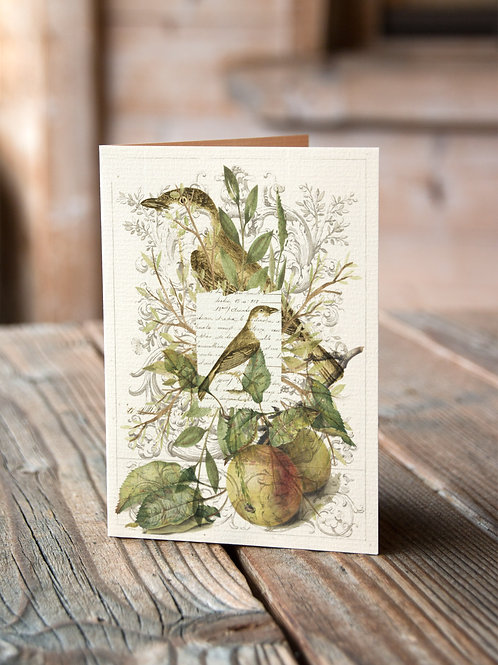 Bird Collage Print-No.33364-Blank Note Card