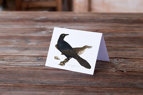 Bird Print-Number 17-Blank Note Card