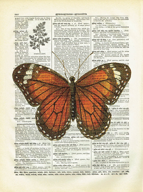 Butterfly-Vintage Book Page Art Print No.07